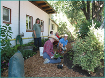 Healdsburg Animal Shelter