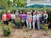 West Plaza Rose Garden Garden revitalized by Club Volunteers